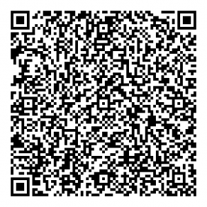 static qr code without logo 1